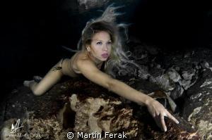 Predator by Martin Ferak