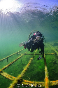Diver and Sun Rays, Wraysbury Lake, Middlesex. by Nick Blake
