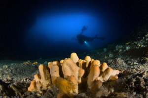 Albanian cave diving by Mathieu Foulquié