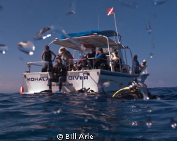 Start of the dive.  Getting everyone off the boat. by Bill Arle
