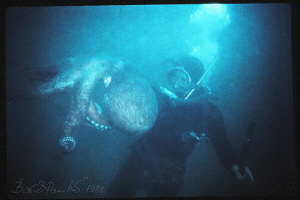 Octopus Hunter / Giant octopus Dofleini by Boris Pamikov