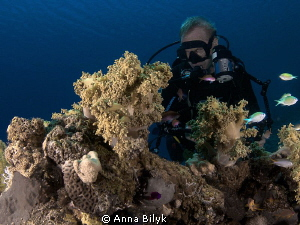 Diver by Anna Bilyk