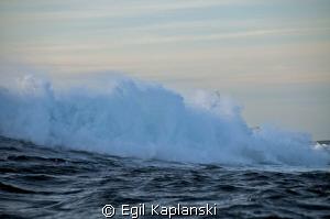 """Bjogna and """"Stormfuglen"""" by Egil Kaplanski"""