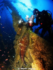 A big grouper on the Joker wreck (sailboat) by Alberto Gallucci
