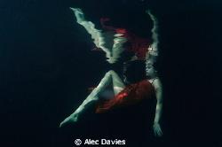 Elsa shot in pool by Alec Davies