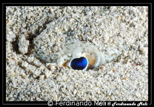 Eye into the sand by Ferdinando Meli