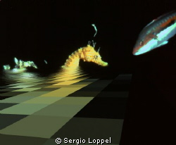 Checkmate. Come una partita a scacchi. by Sergio Loppel