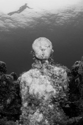 Diver views an underwater museum from above... by Spencer Burrows
