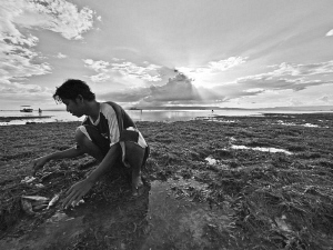 Scant booty for this fisherman on Cabilao Island (Phils) by Alex Varani