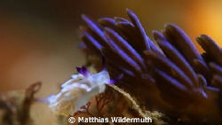 """Dawn is breaking""
