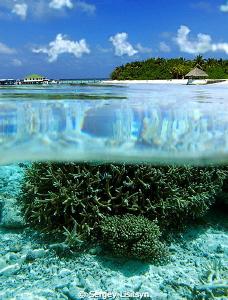 Eriyadu Island Resort 3*     by Sergey Lisitsyn
