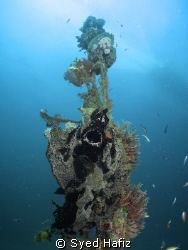 Black Frogfish Yawning. canon S100 + wide angle + dual in... by Syed Hafiz