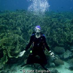 Buddha Diver by Nate Ewigman