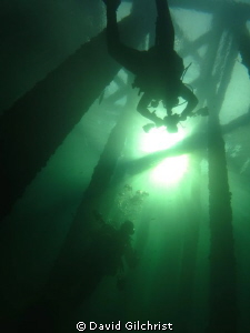 A dive at the Swing Bridge site, Welland Scuba Park. by David Gilchrist