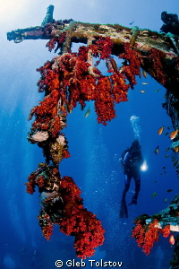 Wreck dive by Gleb Tolstov