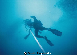 This photo of divers ascending the anchor line was taken ... by Scott Reynolds