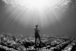 Free diver Canon 5D Mark II & Sea&Sea MDX 5D MK II Cano... by Mutlu Kurtbas