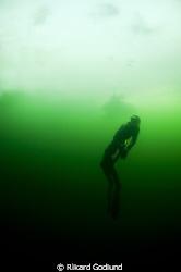 Freediver diving under the ice in Sweden by Rikard Godlund