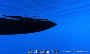 """""""Peaceful"""" by Christian Vizl"""