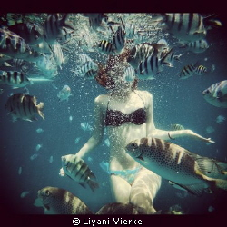 Swimming in the water and there were so many fish everywhere by Liyani Vierke