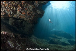 seabed by Ernesto Cordella