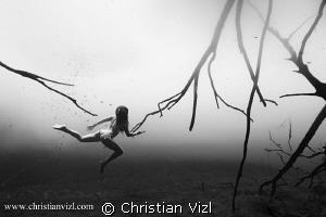 """Running wild"" by Christian Vizl"