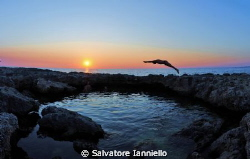 Ultimo tuffo by Salvatore Ianniello