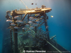 Meeting in the Kittiwake by Romeo Penacino