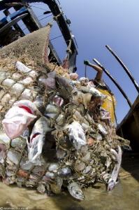 overfishing (?.....) by Mathieu Foulquié