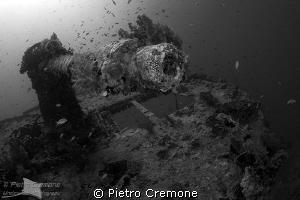 Thistlegorm's cannon by Pietro Cremone