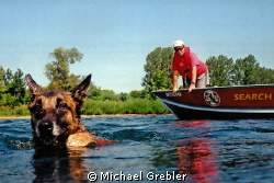 "The ""victims"" view of water rescue/cadaver dog training n... by Michael Grebler"