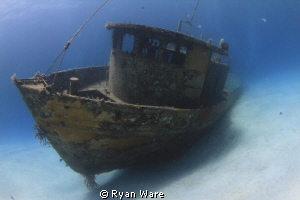 Wreck in Nassau Bahamas. For a quick second all the diver... by Ryan Ware