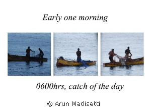 Someone was blowing a conch at 430 this morning, indicati... by Arun Madisetti