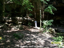 The cenote (sinkhole/collapsed water cave) in this pictur... by Betty Gail Danielson