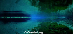 Nanda Blue Hole in Santo. Looking out of the Blue Hole an... by Quentin Long
