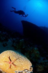 Wreck diving by Gleb Tolstov