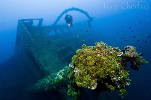 Wreck of the Tokai Maru, Apra Harbor, Guam. F7.1, 1/15, I... by Tony Cherbas