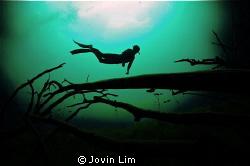 @ Cenote Car Wash (Aktun Ha) by Jovin Lim