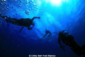 Divers in the shadow .Balaclava Mauritius 30 metres maxim... by Linley Jean-Yves Bignoux