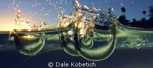Sunset drops in a tide pool ...laguna beach by Dale Kobetich