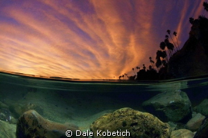 after sunset in a laguna beach tide pool by Dale Kobetich