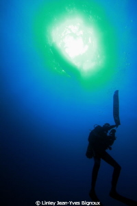 Swing the parachute deep dives Mauritius -Diver- Serge Ga... by Linley Jean-Yves Bignoux