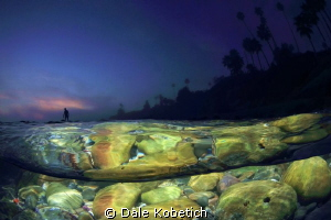 The Last Wave by Dale Kobetich