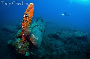 Wreck of the Mitsubishi A6M Zero, Kimbe Bay, Papua New Gu... by Tony Cherbas
