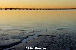 Tagus River ! :) by Elia Correia