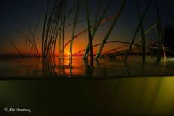 Over/Underwater sunset from Uluabat Lake Gölyazı/Bursa/Tu... by Alp Baranok