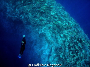 from Blue Hole by Ladislav Nogacek