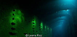 light in the wreck of the Umbria by Leena Roy