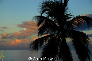 moon almost set but behind clouds by Arun Madisetti