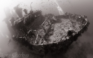 Pai Wreck #2, Papua New Guinea by Tony Cherbas
